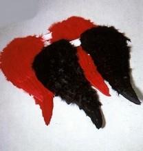 Ein Paar Engelsflügel rot Engel Engelchen