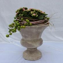 Blumen & Besonderes:Topf Pokal mit Minipflanzen