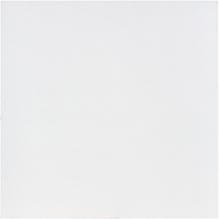 FS Fliese Weiß 60 60 cm Fliesen