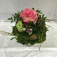 Blumen & Besonderes:Rose kurz gebunden