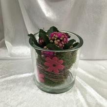 Blumen & Besonderes:Glas bepflanzt