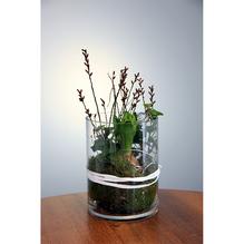 Glas mit Frühlingsbepflanzung Ø 15 cm H 21 cm