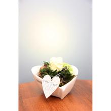 Schale Camolia Ø 20 cm mit Frischblumen Dekoration