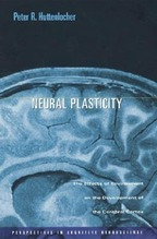 Neural Plasticity: The Effects of Environment on the Development of the Cerebral Cortex | Huttenlocher, Peter R.