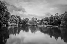 Rombergpark-Foto