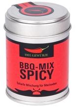 BBQ-Mix Spicy