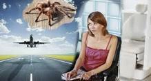 Spezifische Ängste und Phobien auflösen